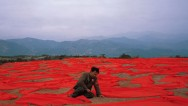 Gao Shiqiang – RED
